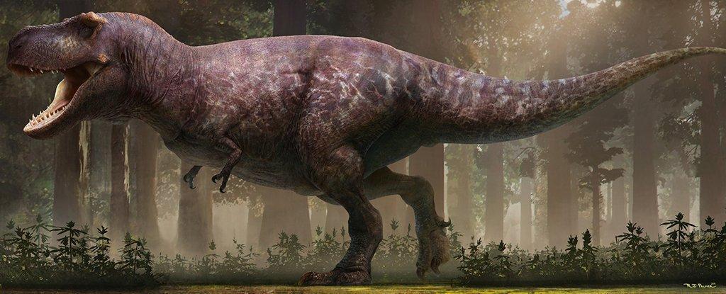 chubby-t-rex_1024.jpg