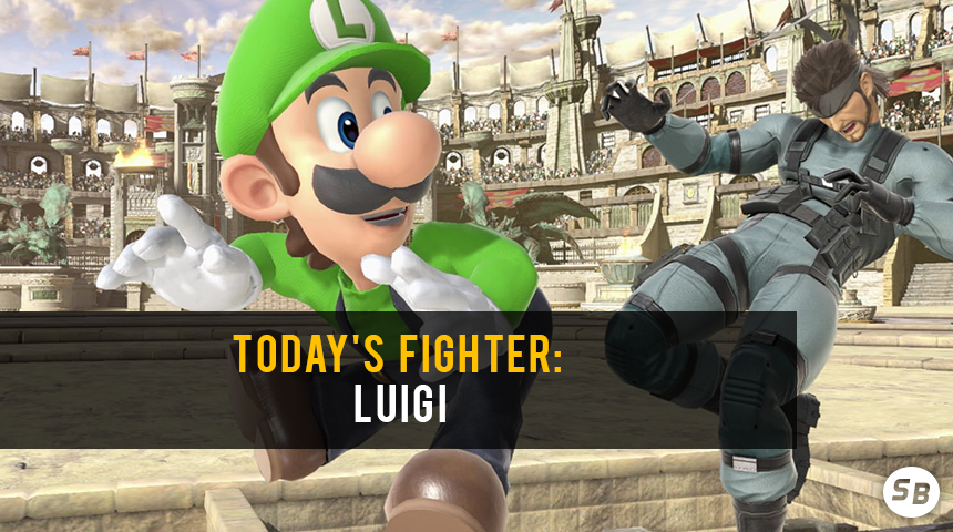 Luigi_Fighter_of_Day.png