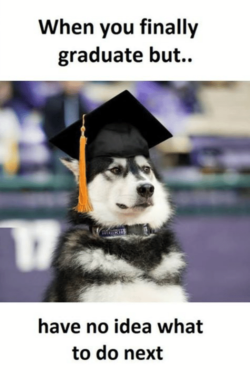 when-you-finally-graduate-but-have-no-idea-what-to-17179888.png