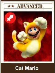 Cat Mario.jpg