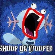 Shoopdawooper