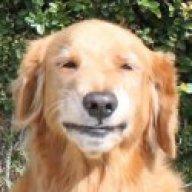 mynameisdog4