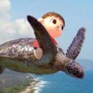 flying_tortoise