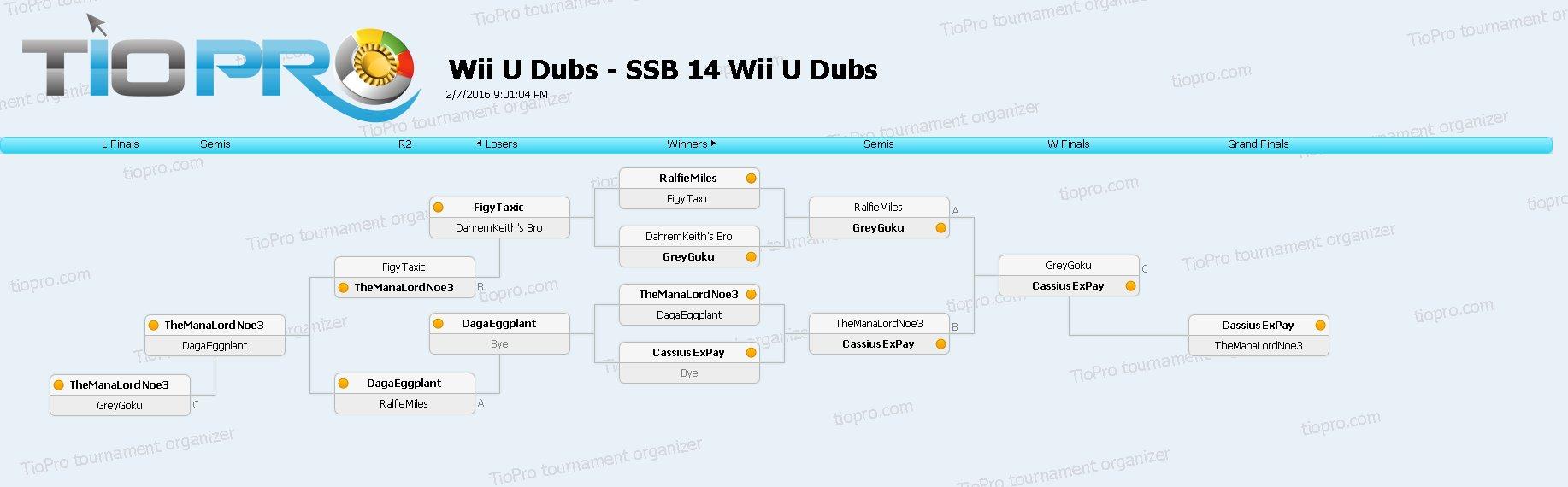 SSB14 Wii U Doubles
