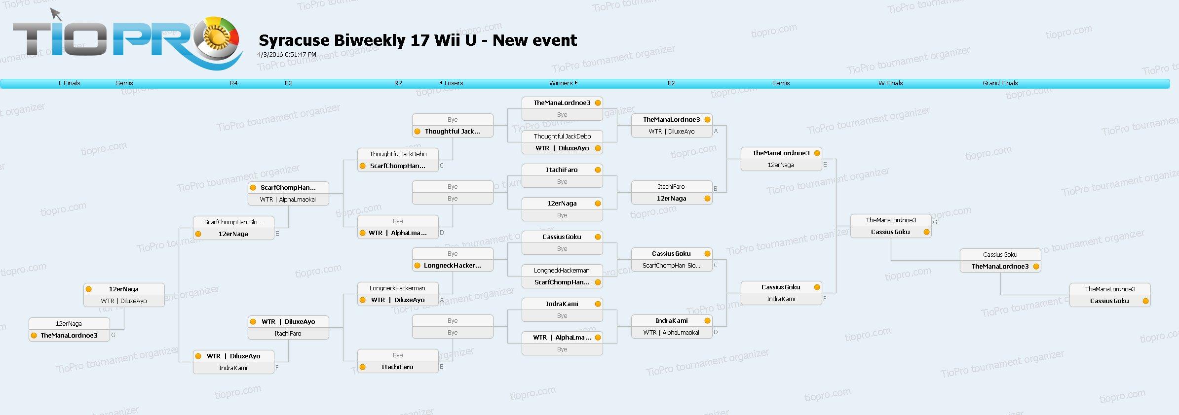 SSB17 Wii U Doubles